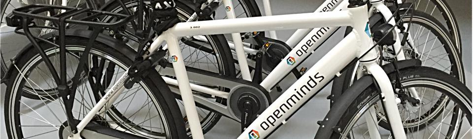 pervélo gepersonaliseerde fietsen